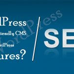 SEO Friendly CMS